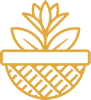 logo_small_li